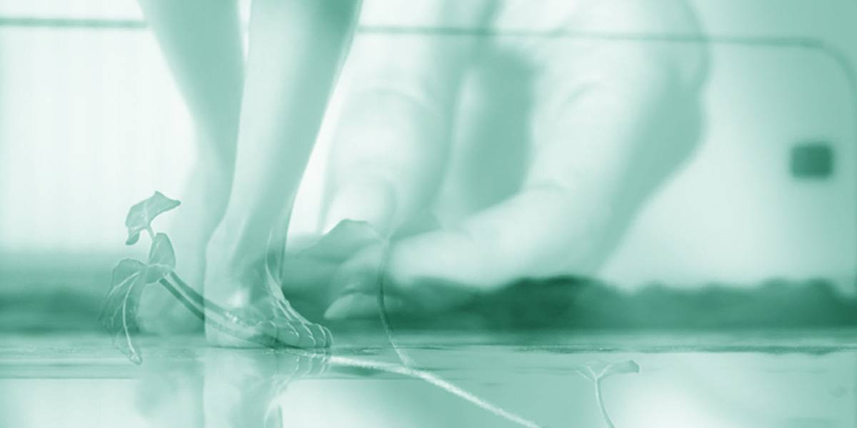 Eco-Active, Antibacterial Tiles for Floors and Walls - Active